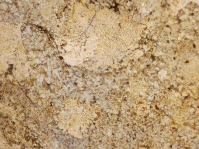 Golden-Beach-Granite